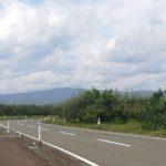 リンゴ畑と道路の画像