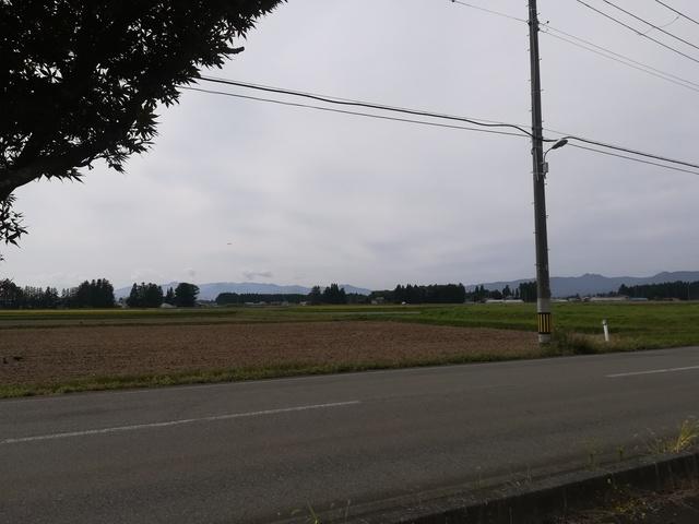 稲作の画像