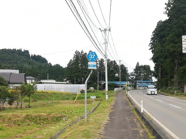 県道37号線の看板の画像